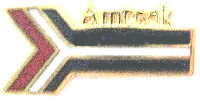 AMTRAK LOGO METAL HAT PIN